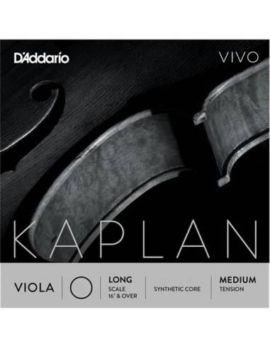Kaplan vivo alto