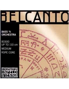 Thomastik belcanto contrebasse orchestre