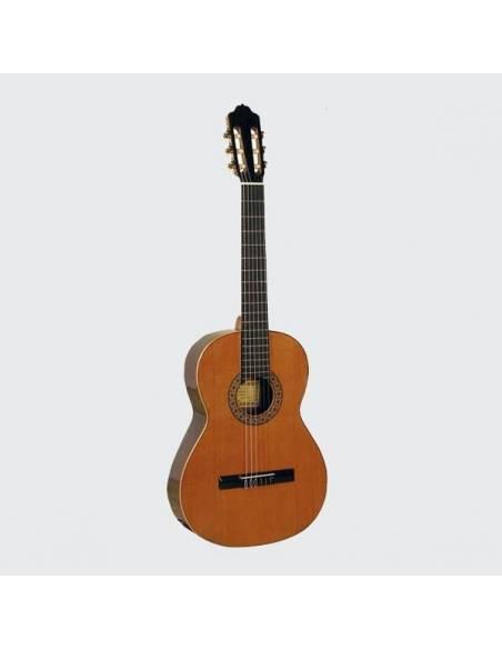 Guitares ( Instrument )