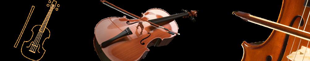 Violoncelles, accordeurs, archets, cordes,colophane et accessoires | Pizz&Arco