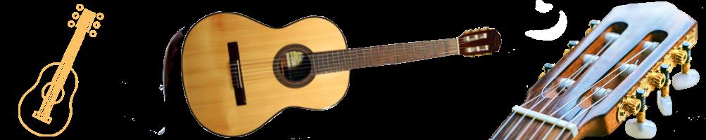 Guitares, accordeurs, cordes, mediators et accessoires | Pizz&Arco